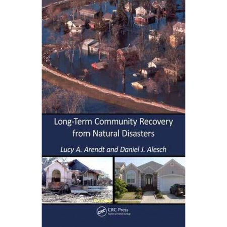 Recovering From A Natural Disaster  Essay Sample  Ripaperyvhx  Recovering From A Natural Disaster