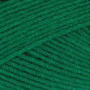 Mary Maxim Maximum Value Yarn - Green