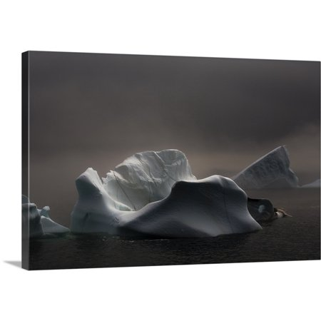 Great BIG Canvas | John Sylvester Premium Thick-Wrap Canvas entitled Icebergs In Fog, Quirpon Island, Newfoundland