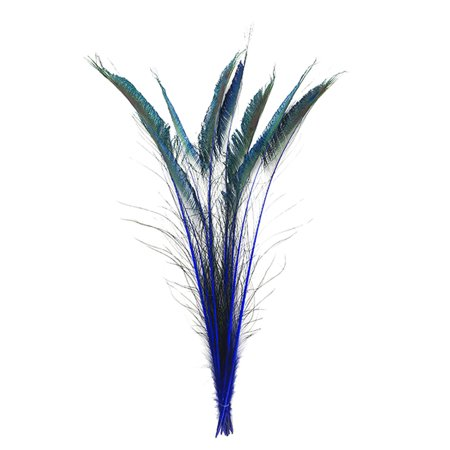 """Zucker Feather Products Peacock Swords Stem Dyed - 15-25"""" - 10pcs - Royal"""