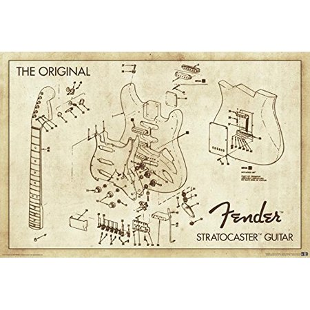 - Stratocaster Guitar The Original Fender Drawing Blueprint 36x24 Art Print Poster   Rock and Roll Electric