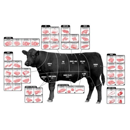 Beef Cuts Of Meat Butcher Chart Cattle Diagram Poster Wall Art