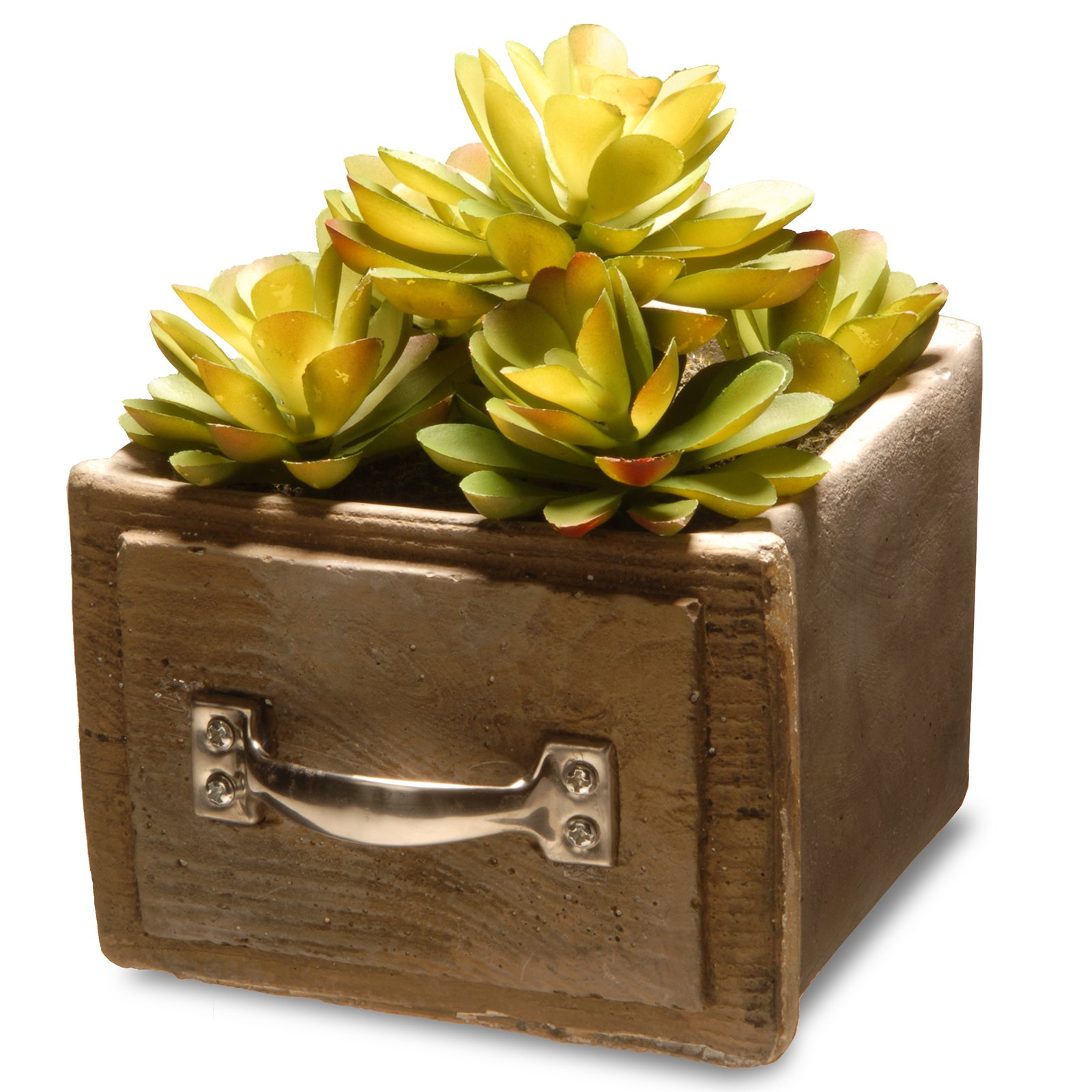 National Tree Artificial Succulent Plant 2-Pack