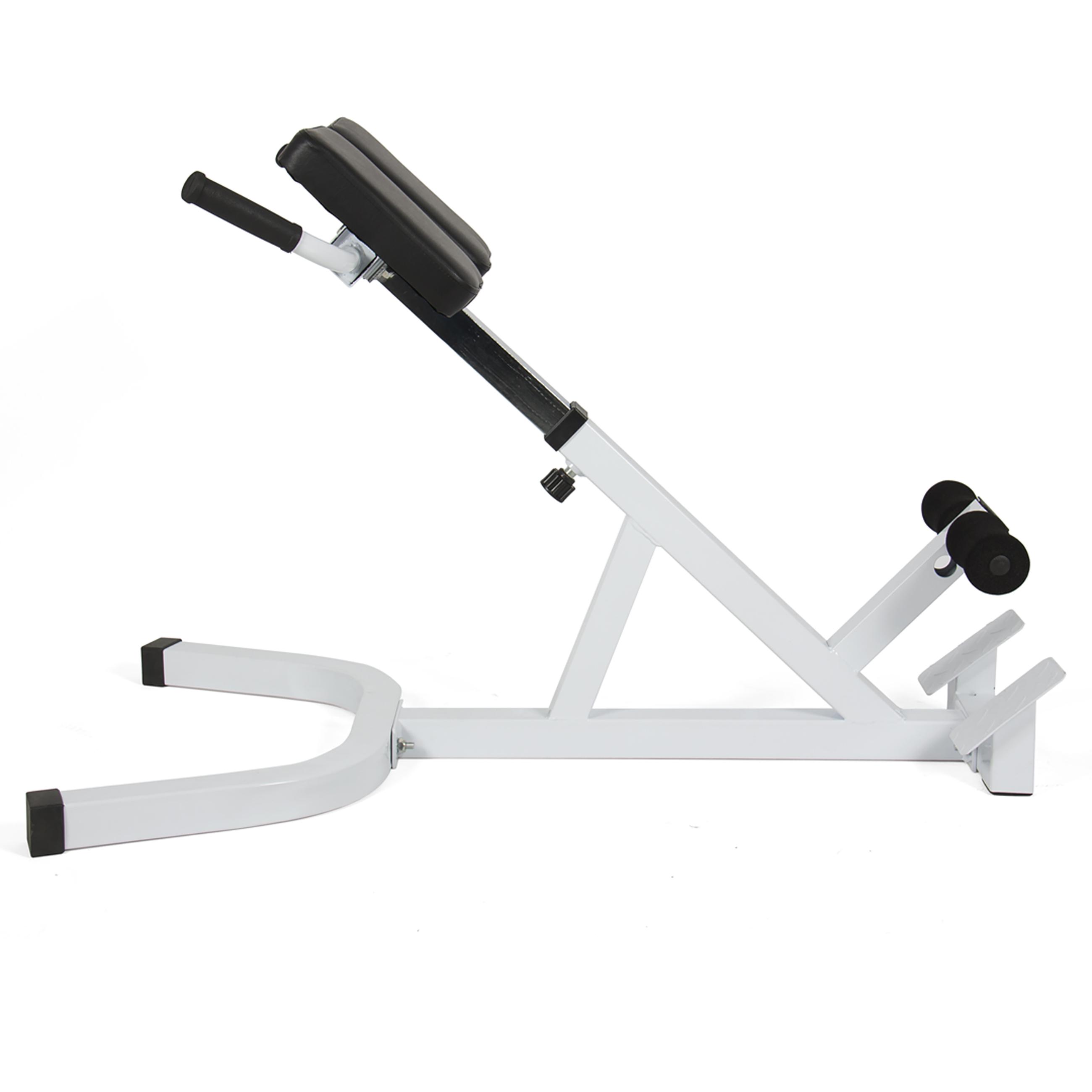 Ab Bench Roman Chair 45 Degree Hyperextension Abdominal Bench Gym