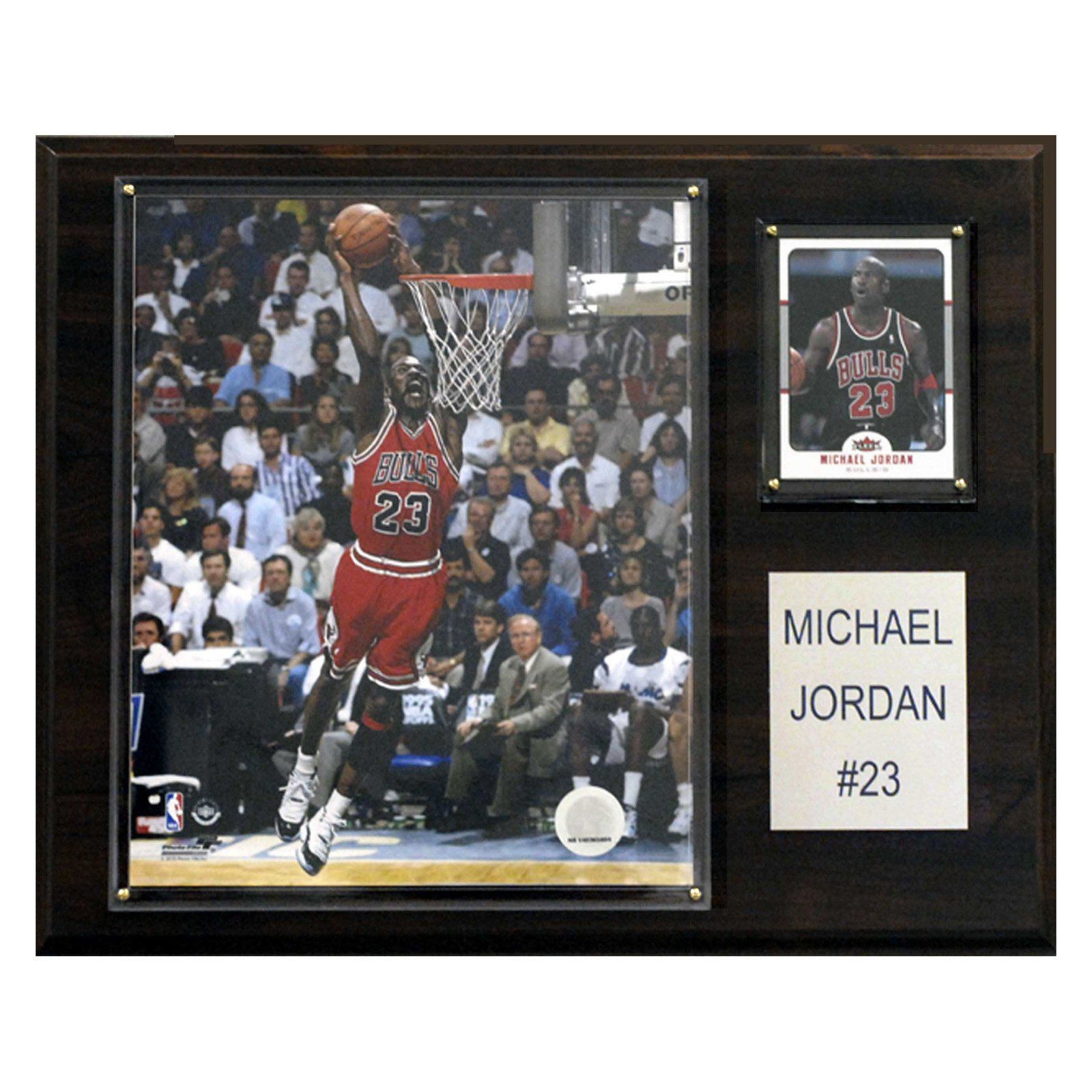 C&I Collectables NBA 12x15 Michael Jordan Chicago Bulls Player Plaque