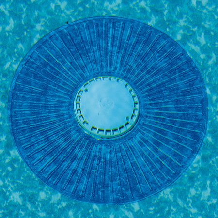 Smart Pool Smart Ring Drain Cover For In Ground Pool