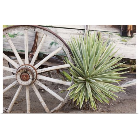 Great BIG Canvas | Rolled Jamie and Judy Wild Poster Print entitled California, Anza-Borrego Desert State Park, desert agave plant and wagon