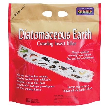 Diatomaceous Earth Bed Bugs - DIATOMACEOUS EARTH CRAWLING INSECT KILLER