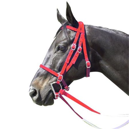 - Intrepid International 159175R Race Horse Bridle Nylon with Reins add Curb Strap, Red