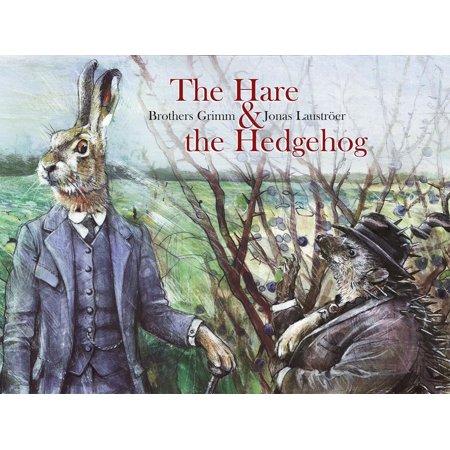 The Hare & the Hedgehog - Hedgehog Information For Kids