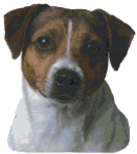 Jack Russell Terrier Dog Portrait Counted Cross Stitch Pattern