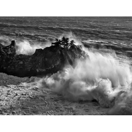 California, Big Sur, Big Wave Crashes Against Rocks and Trees at Julia Pfeiffer Burns State Park Print Wall Art By Ann Collins