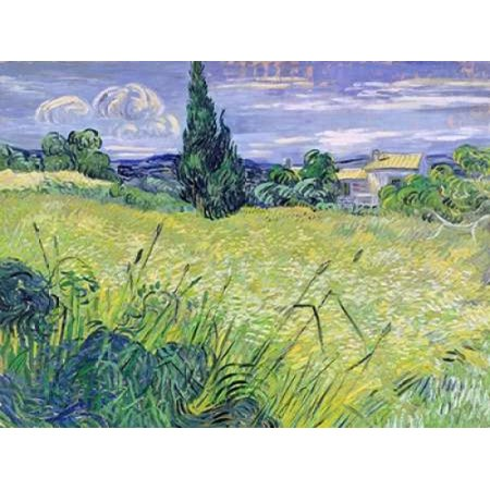 Landscape with Green Corn Poster Print by Vincent Van Gogh ()