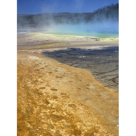 Geyserite Terraces Coloured by Algal Mats, Midway Geyser Basin, Unesco World Heritage Site Print Wall Art By Tony Waltham