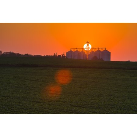 The sun sets behind a large commercial grain storage facility in mid-summer in central Iowa with a green soybean field and green corn field in the foreground Iowa United States of America Rolled Canva - Corn Roll