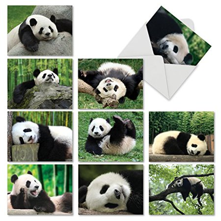 'M6471TYG POOPED PANDAS' 10 Assorted Thank You Note Cards Featuring Passed Out Pandas Sweetly Sleeping After a Long Hard Day of Playful Antics with Envelopes by The Best Card