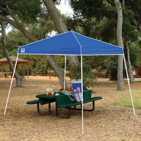 Z-Shade 10' x 10' Horizon Shade Canopy Tent w/ Screen, Stake Kit & Weight (Bag Kit Screen)