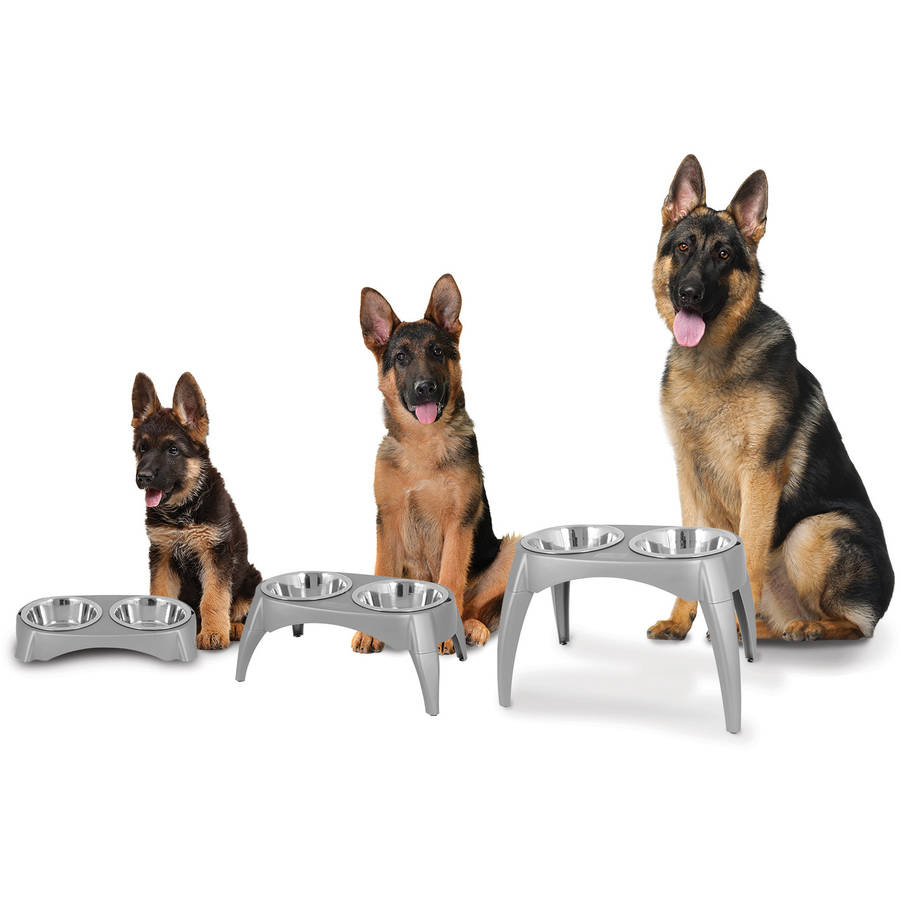 Ruff Maxx Grow With Me Elevated Feeder