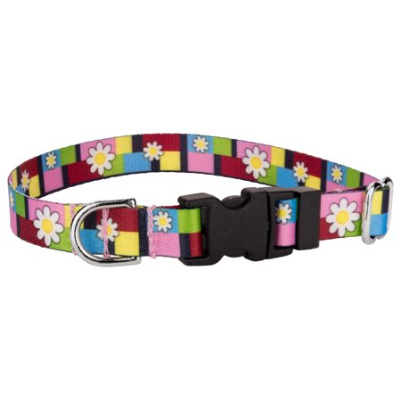 Country Brook Design® Deluxe Spring Daisies Dog Collar ()