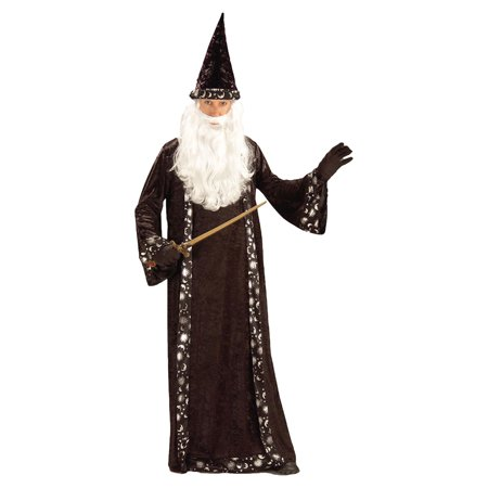 Morris Costumes Mens Capes & Robes Wizard Hat Costume One Size, Style FM59474 - Wizard Robe