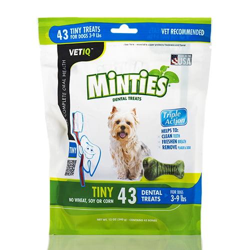 Minties� Dental Treats for Dogs (3-9 lbs) - 43 Tiny Treats (12 oz / 340 Grams) b