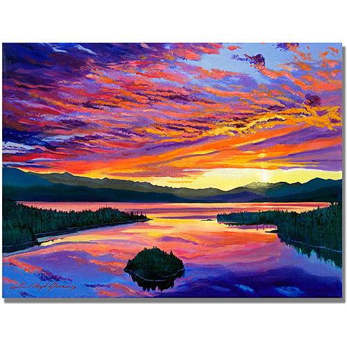 "Trademark Art ""Paint Brush Sky"" Canvas Wall Art by David Lloyd Glover"