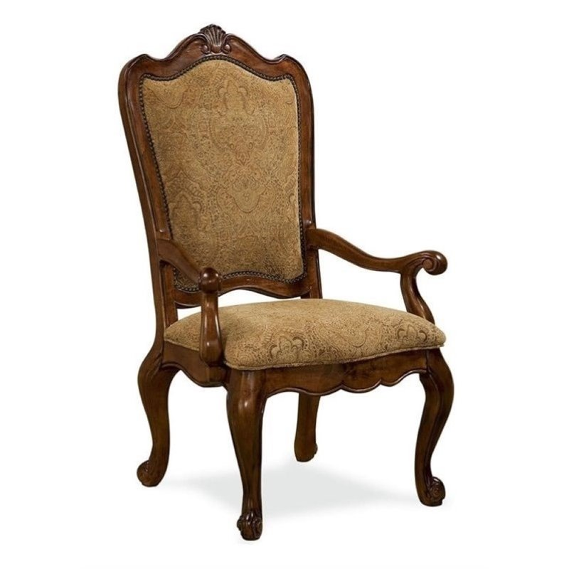 Beaumont Lane Upholstered Back Arm Chair in Villa Cortina
