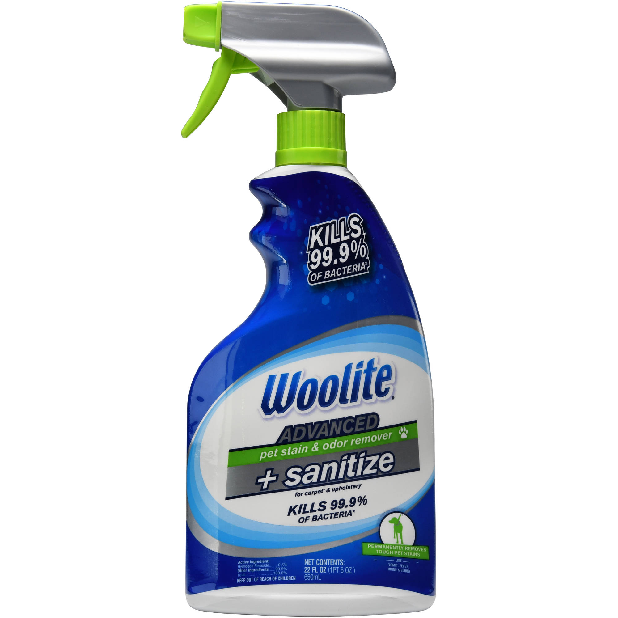 Woolite Advanced Pet Oxy Stain & Odor Remover, 22 fl oz