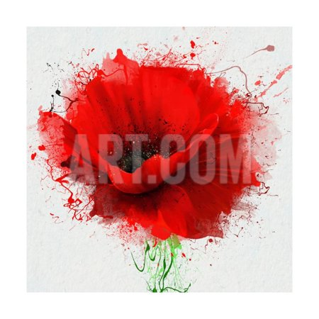 Beautiful Poppy (Beautiful Red Poppy, Closeup on a White Background, with Elements of the Sketch and Spray Paint, As Print Wall Art By Pacrovka)