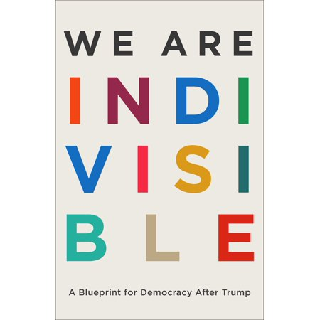 We Are Indivisible : A Blueprint for Democracy After