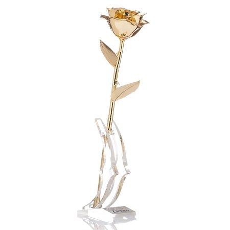 Gold Gravy Stand (Long Stem Dipped 24k Gold Rose in Gift Box with Clear Display Stand,Gifts for Mother's Day;Valentine's Day;Thanksgiving (Golden) )