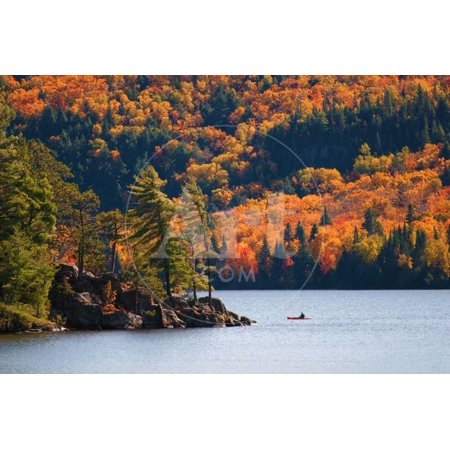 Kayaking in Algonquin Provincial Park, Ontario, Canada Print Wall Art By