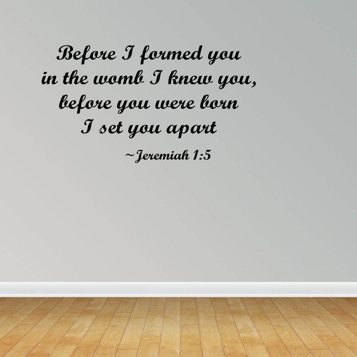 Before I Formed You In The Womb I Knew You Jeremiah 1:5 Vinyl Wall Decal JR522