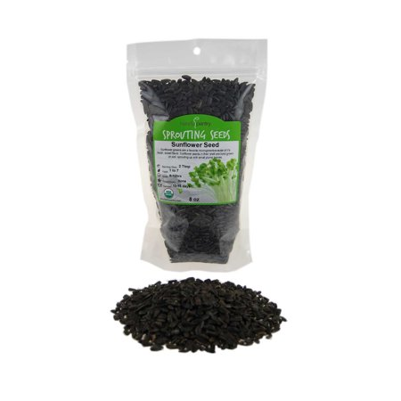 Organic Sunflower Sprouting Seeds (Shell On): 8 Oz - Non-GMO, Black Oil Sun Flower Seeds: Edible Seed, Gardening, Hydroponics, Growing Micro Salad Greens, Sprouting,