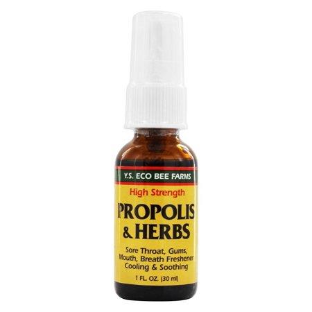Ys Organic Bee Farms   Propolis Herb Throat Spray   1 Oz