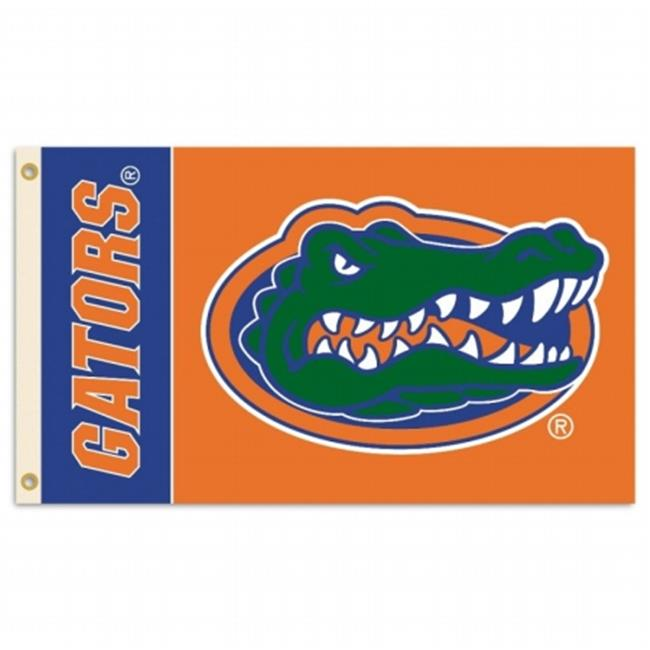 BSI PRODUCTS 92109 2-Sided 3 Ft.  X 5 Ft.  Flag with Grommets - Florida Gators