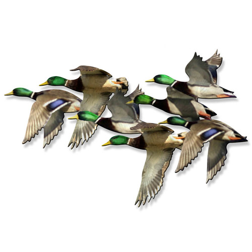 All My Walls String of Mallards Wall D cor