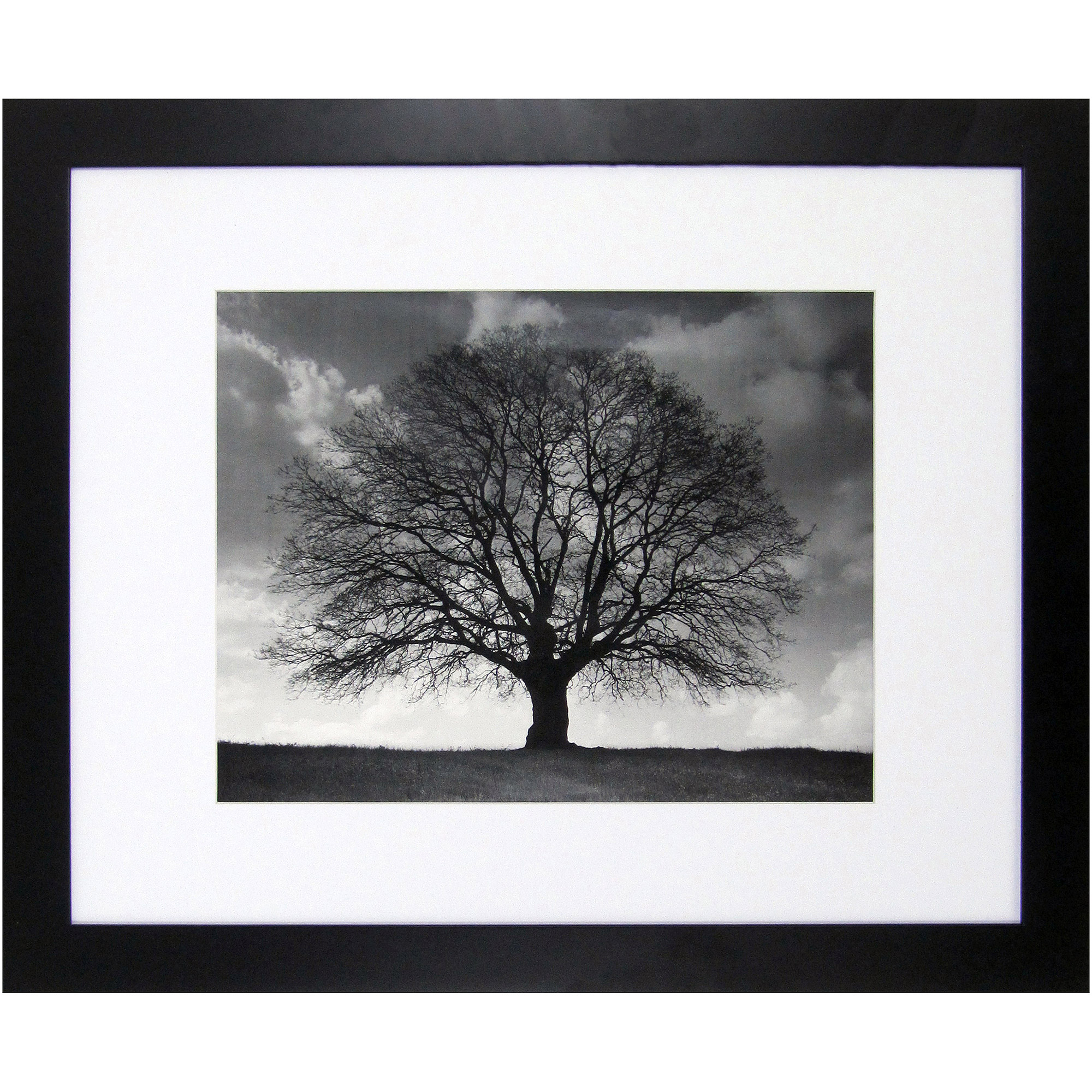 Better Homes Amp Gardens Museum Picture Frame 14x18 Quot Matted