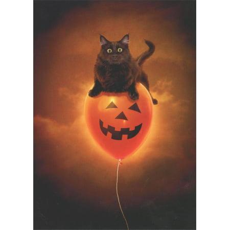 Avanti Press Cat On Balloon Halloween - Halloween Photo Cards Target