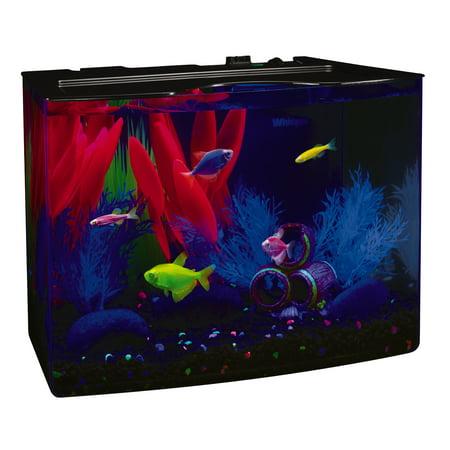 GloFish Crescent aquarium Kit 3 Gallons, Includes Hidden Blue LED Light And Internal Filter (Cheap Fish Tank With Filter)