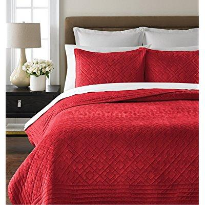 Martha Stewart Collection Diamond Plush Poinsettia Twin Quilt