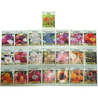 Set of 22 Valley Green Black Duck Brand Heirloom Flower Seeds 22 Different Varieties Non-GMO (Variety Deluxe Flower Garden)