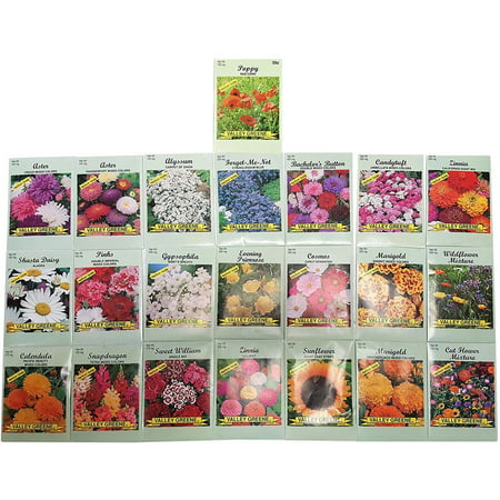Set of 22 Valley Green Black Duck Brand Heirloom Flower Seeds 22 Different Varieties Non-GMO (Variety Deluxe Flower