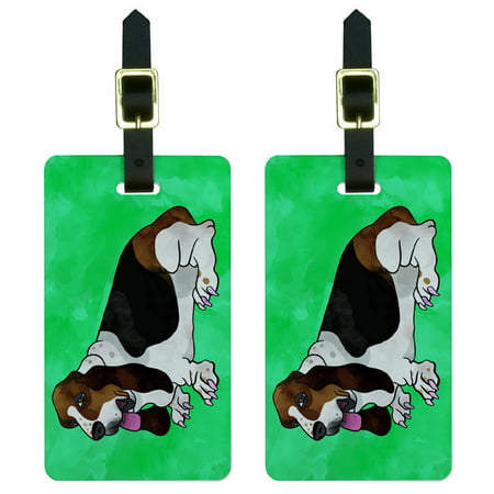 Graphics and More Basset Hound Watercolor Teal Luggage Tag Set ()