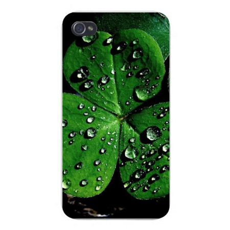 Apple Iphone Custom Case 4 4s White Plastic Snap on - Clover Plant Leaves w/ Water Droplets Sitting