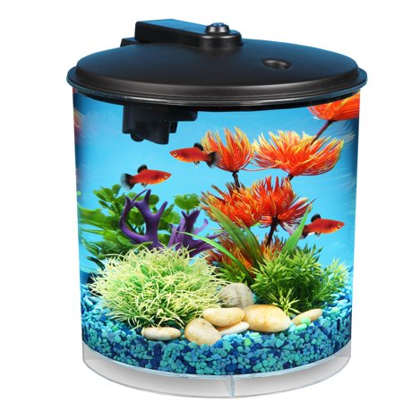 Hawkeye 2-Gallon Aquarium Starter Kit with Power Filter and