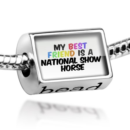 Bead My best Friend a National Show Horse Charm Fits All European