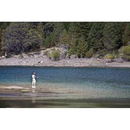 Fly Fishing at the Limay River in the Lake District, Patagonia, Argentina, South America Print Wall Art By Yadid Levy ()
