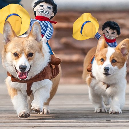 Petacc Pet Costume Funny Dog Cowboy Knight Apparel Puppy Riders Clothes](Dog Cowboy Halloween Costumes)