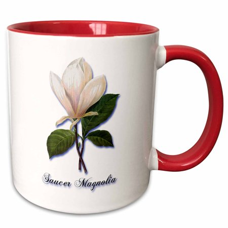 3dRose Saucer Magnolia, Botanical Print of a Large White Flower - Two Tone Red Mug, (Botanicals Magnolia)